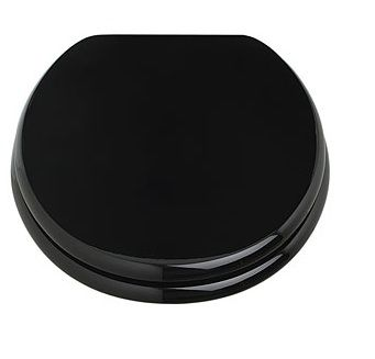 Gloss Black Toilet Seat